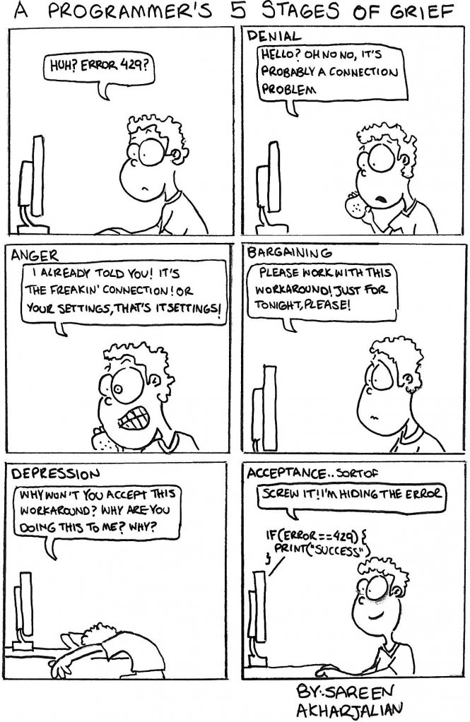 A Programmer's 5 Stages of Grief