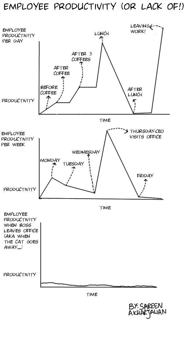 Employee Productivity Chart (Or Lack Of!)
